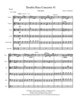 Double Bass Concerto No.1, 1st Movement